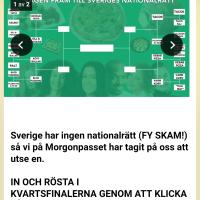 Sveriges nationalrätt